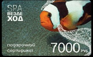 Подарочный сертификат СПА-Вездеход 7000